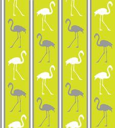 Free Green Flamingo Texture Stock Photos - 8220833