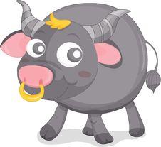Free Bull Royalty Free Stock Photo - 8220985
