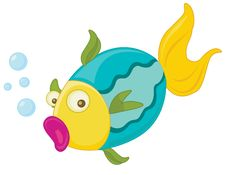 Free Fish Stock Photo - 8220990