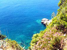 Free Croatian Coast Royalty Free Stock Photo - 8225145