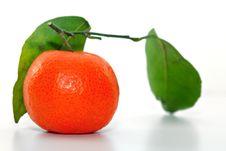 Free Chinese Orange Royalty Free Stock Photo - 8225415