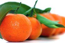 Free Chinese Orange Stock Image - 8225421