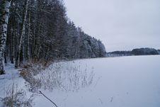 Free Winter Stock Photo - 8226310