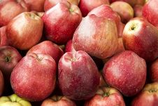 Free Red Apples Stock Image - 8226551