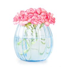 Free Carnations Royalty Free Stock Photo - 8227125