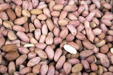 Free Peanuts Stock Photography - 8227282