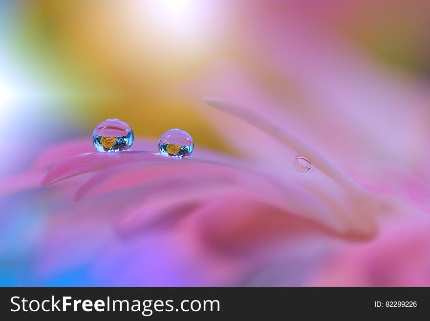 Incredibly Beautiful Nature Art Photography Fantasy Design