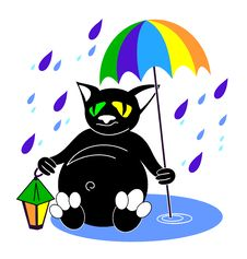 Free Cat With Umbrella Stock Photography - 8230912