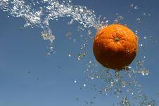 Free Fresh Orange Stock Image - 8232191