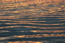 Free Streaks Of Gold On The Water Royalty Free Stock Image - 8232376