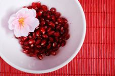 Free Red Seeds And White Bowl Stock Photos - 8235503