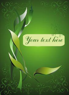 Free Green Card Stock Image - 8235891