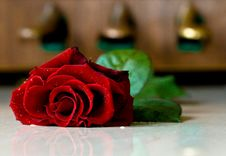 Free Red Rose In Front Of The Piano Pedals Royalty Free Stock Photography - 8237107