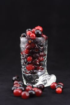 Free Cranberry And Black Currant In A Wine-glass. Royalty Free Stock Image - 8238836