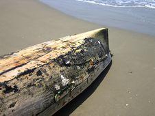 Free Tropical Beach Stock Photos - 8239813