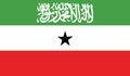 Free Flag Of Somaliland Vector Icon Illustration Royalty Free Stock Photography - 82382937