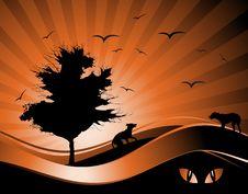 Free Old Tree Silhouette, Season Background Stock Photos - 8241393