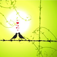 Free Love, Birds Kissing On Branch Stock Images - 8241474