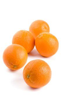 Five Fresh Oranges Stock Image