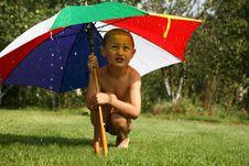 Free Rain Stock Images - 8242274