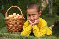 Free Boy With Apples Royalty Free Stock Photography - 8242487