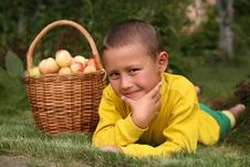 Free Boy With Apples Royalty Free Stock Photos - 8242528