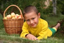 Free Boy With Apples Royalty Free Stock Photography - 8242557