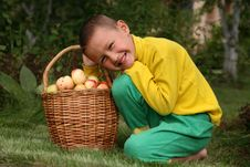 Free Boy With Apples Stock Photography - 8242702