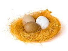 Free Eggs In A Small Nest Stock Photo - 8242740