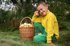 Free Boy With Apples Stock Photography - 8242892