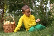 Free Boy With Apples Stock Images - 8243244