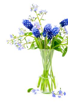 Free Bouquet Of Spring Flowers Royalty Free Stock Photography - 8243487