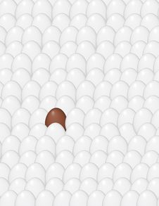 Free Chocolate Egg In Chicken Eggs Stock Photo - 8245100
