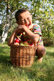 Free Boy With Apples Stock Images - 8245624