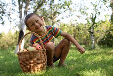 Free Boy With Apples Royalty Free Stock Photos - 8245808