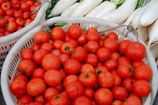 Pengzhou, China: Tomatoes And White Radishes Stock Photography