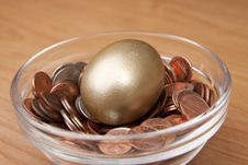 Free Nest Egg Stock Photos - 8247973
