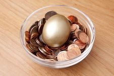 Free Nest Egg Stock Image - 8247991