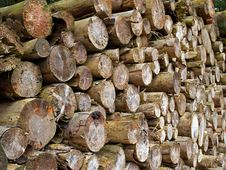 Free Pile Of Heavy Wood Logs Stock Photo - 8249040