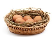 Free Chicken Eggs And Hay In  The Brown Basket . Stock Images - 8249404