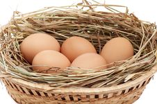 Free Chicken Eggs In The Brown Basket And Hay. Royalty Free Stock Image - 8249426