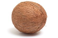 Free One  Coconut On A White Background. Stock Image - 8249501