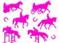 Free Equitation Silhouette Stock Photo - 8254890
