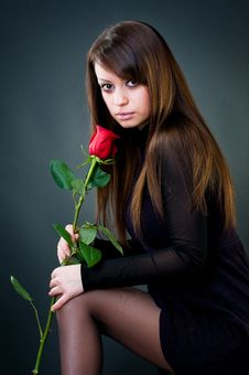 Free Young Girl With Rose Stock Photos - 8251833