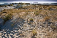 Free Sardinian Desertic Landscape In Italy Stock Photography - 8252172