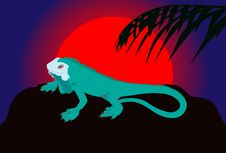 Free Iguana Royalty Free Stock Photos - 8253398