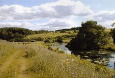 Free Meadow Royalty Free Stock Photos - 8256088