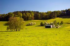 Free Summer Landscape Stock Images - 8256664