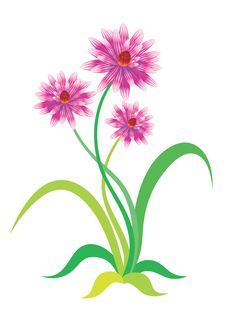 Free Flowers Royalty Free Stock Photos - 8259158
