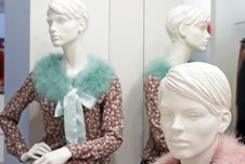 Mannequin In Store Stock Images